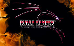 Photo of Kali Linux: Heaven for Hackers?