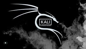 Kali Linux New Release 2019.4: Undercover mode and new themes