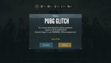 Photo of PUBG Players Are Reporting a 10 Year Ban! Glitch