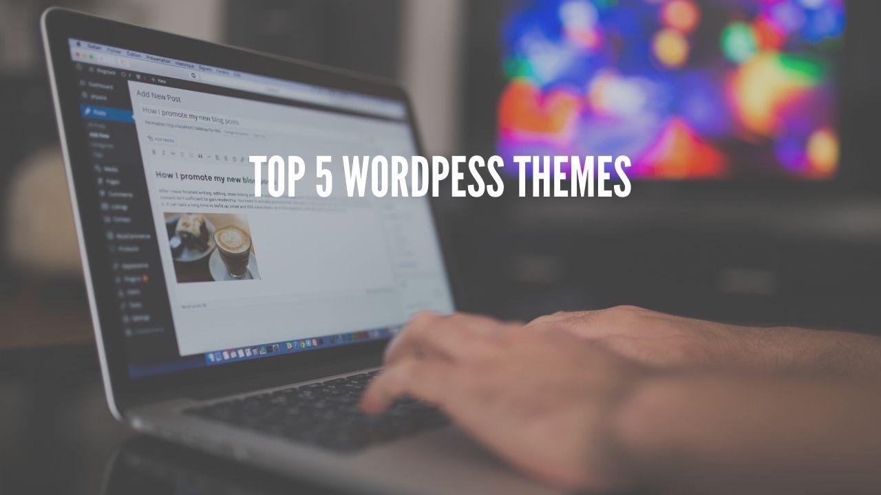 top 5 wordpess themes