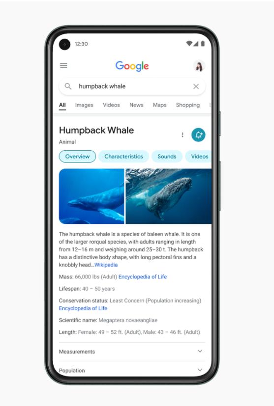 Google-mobile-search-redesign
