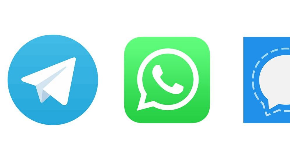 singal-and-telegram-seeing-new-users